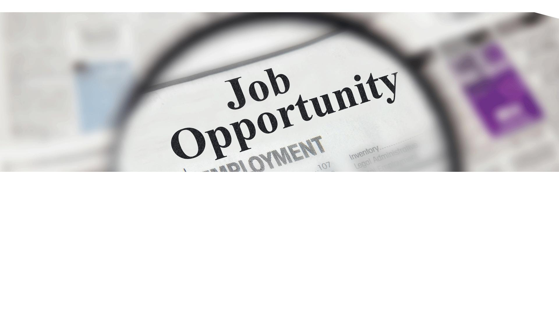Possibilités de carrière